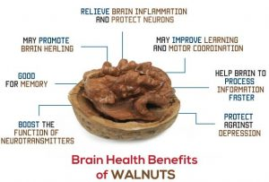 Walnuts – Valley Gold Foods